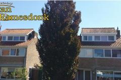 Middenmeer_drColijnstraat2830_2